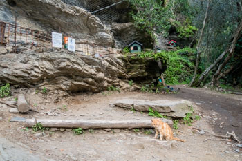 Cat refuge, Blue Trail, Cinque Terre, Italy
