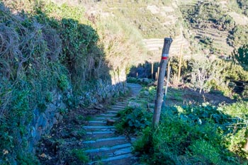 Descent from Volastra to Manarola, Cinque Terre, Italy