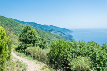 Part of the trail between Soviore Sanctuary and Vernazza, Cinque Terre, Italy